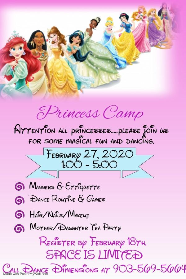 Princess Camp Flier